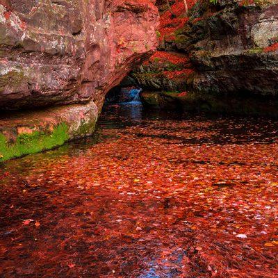 colors-maple-pond-1288192
